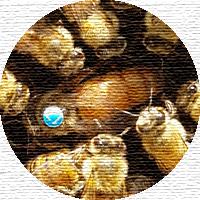ملکه زنبور عسل - Queen bee