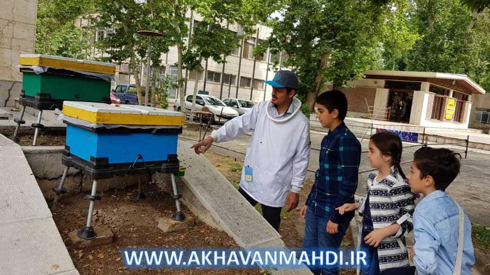 روز درهای باز پردیس کشاورزی و منابع طبیعی دانشگاه تهران و کندوهای زنبورعسل