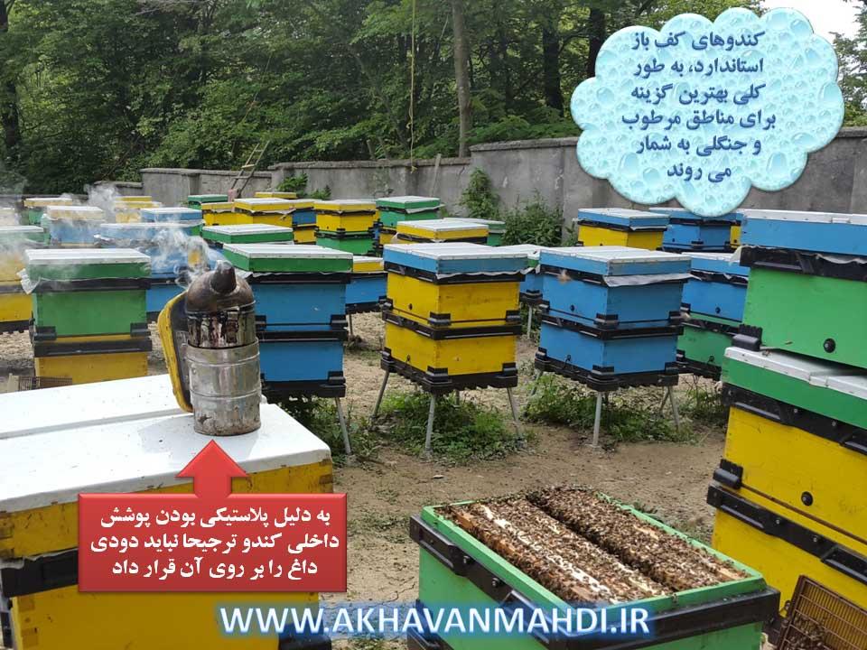 کندوی کف باز بهترین گزینه برای زنبورداری در مناطق مرطوب ایران مانند شمال کشور