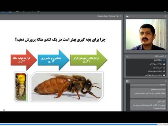 برگزاری وبینارهای آموزش زنبورداری و پرورش زنبور عسل