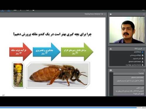فیلم آموزش زنبورداری و پرورش زنبور عسل