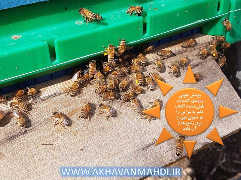 تاثیر جنس تخته پرواز در عبور و مرور زنبور