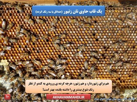 شان حاوی گرده گل - نان زنبور