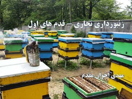 قدم های اول زنبورداری تجاری - زنبورداری مدرن